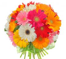 Какие цветы выбрать для 1 сентября