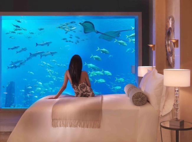 Комната аквариум – почувствуй себя Ихтиандром