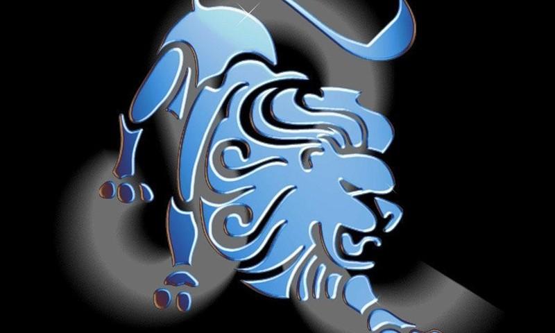 Гороскоп покупок на 2012 год для Львов